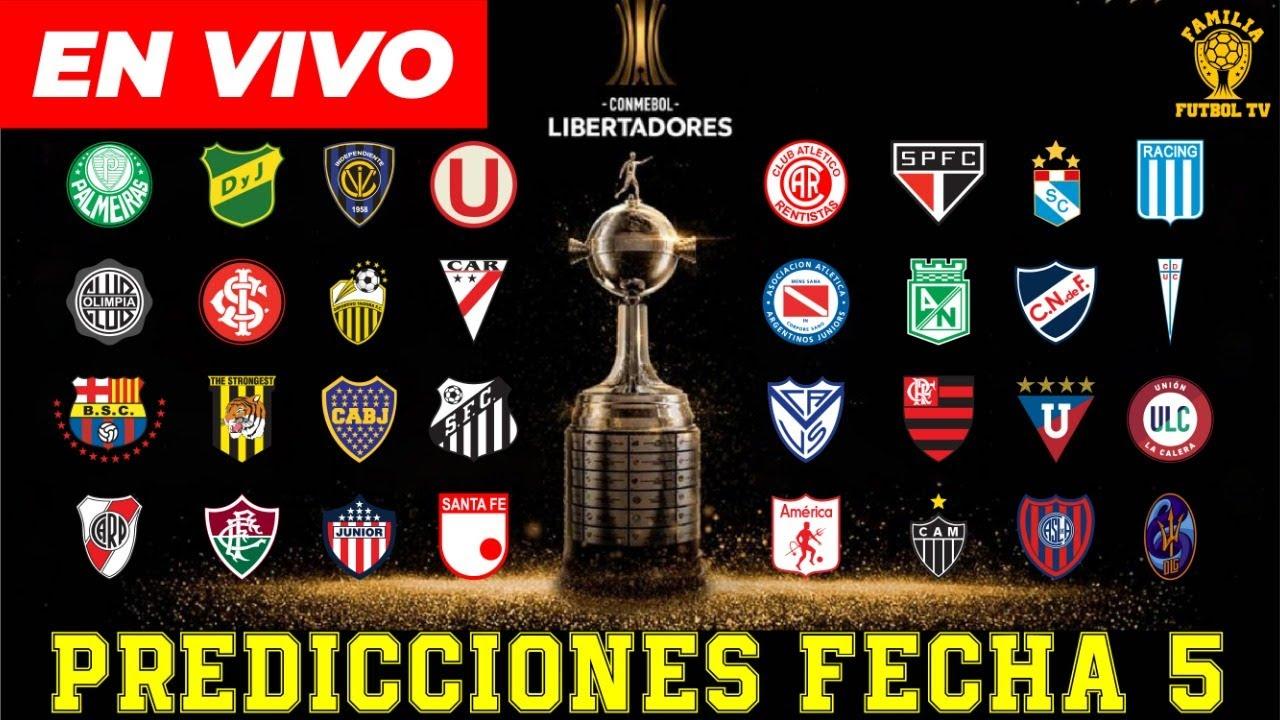 Libertadores 2021 tv millonario 453309