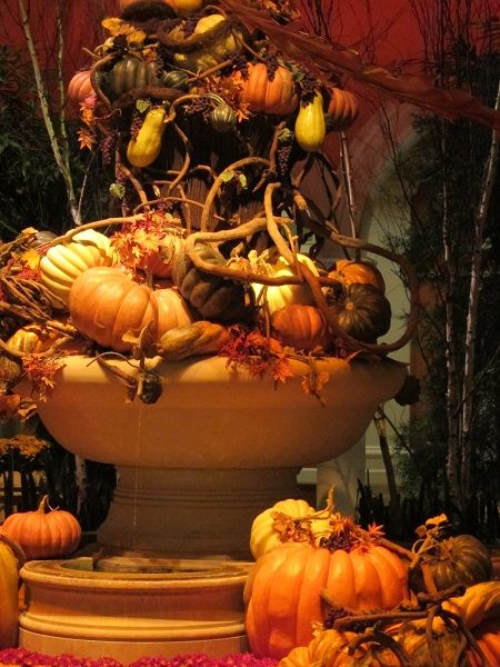 Halloween casino Bellagio 333555